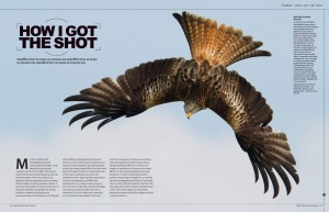 Digital Photography Enthusiast ~ August 2012