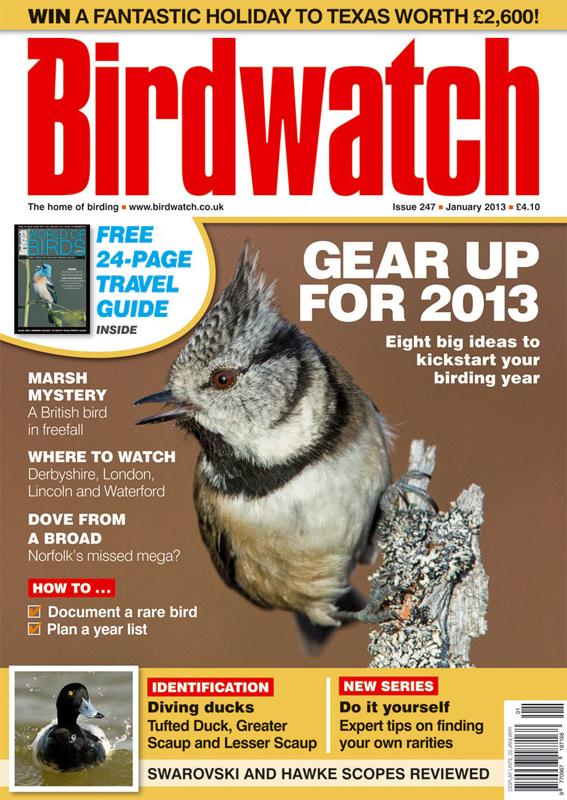 Birdwatch Magazine ~ January 2013