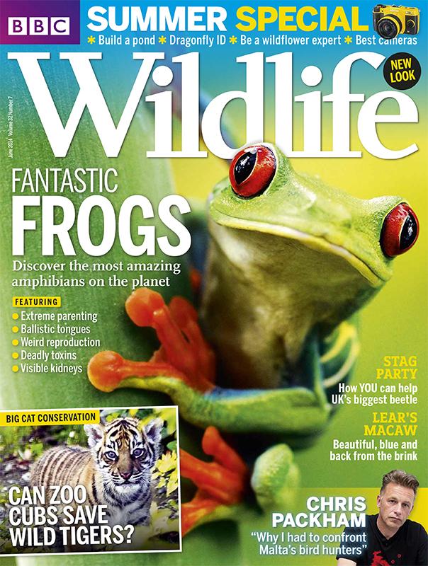 BBC Wildlife Magazine – June 2014