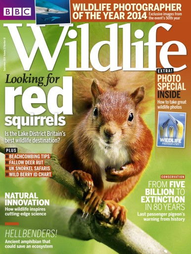 BBC Wildlife Magazine – September 2014