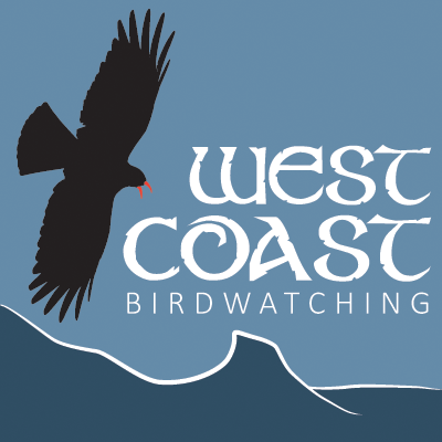 West Coast Birdwatching
