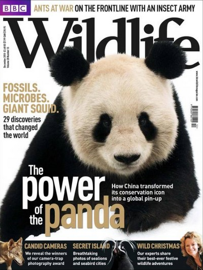 BBC Wildlife Magazine ~ December 2010