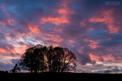 Dinefwr_Sunset