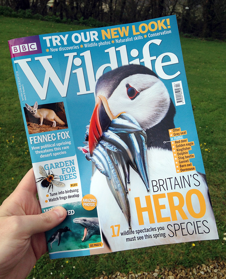 BBC Wildlife Magazine Front Cover! April 2014