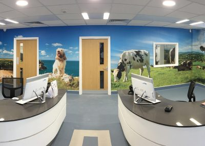 Drew Buckley Photography - Artwork wallpaper created for Fenton Vets