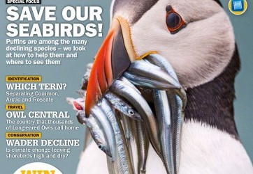 Birdwatch Magazine – July 2016