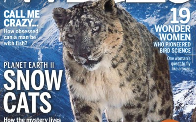 BBC Wildlife Magazine – November 2016