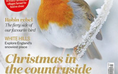 BBC Countryfile Magazine – December 2017