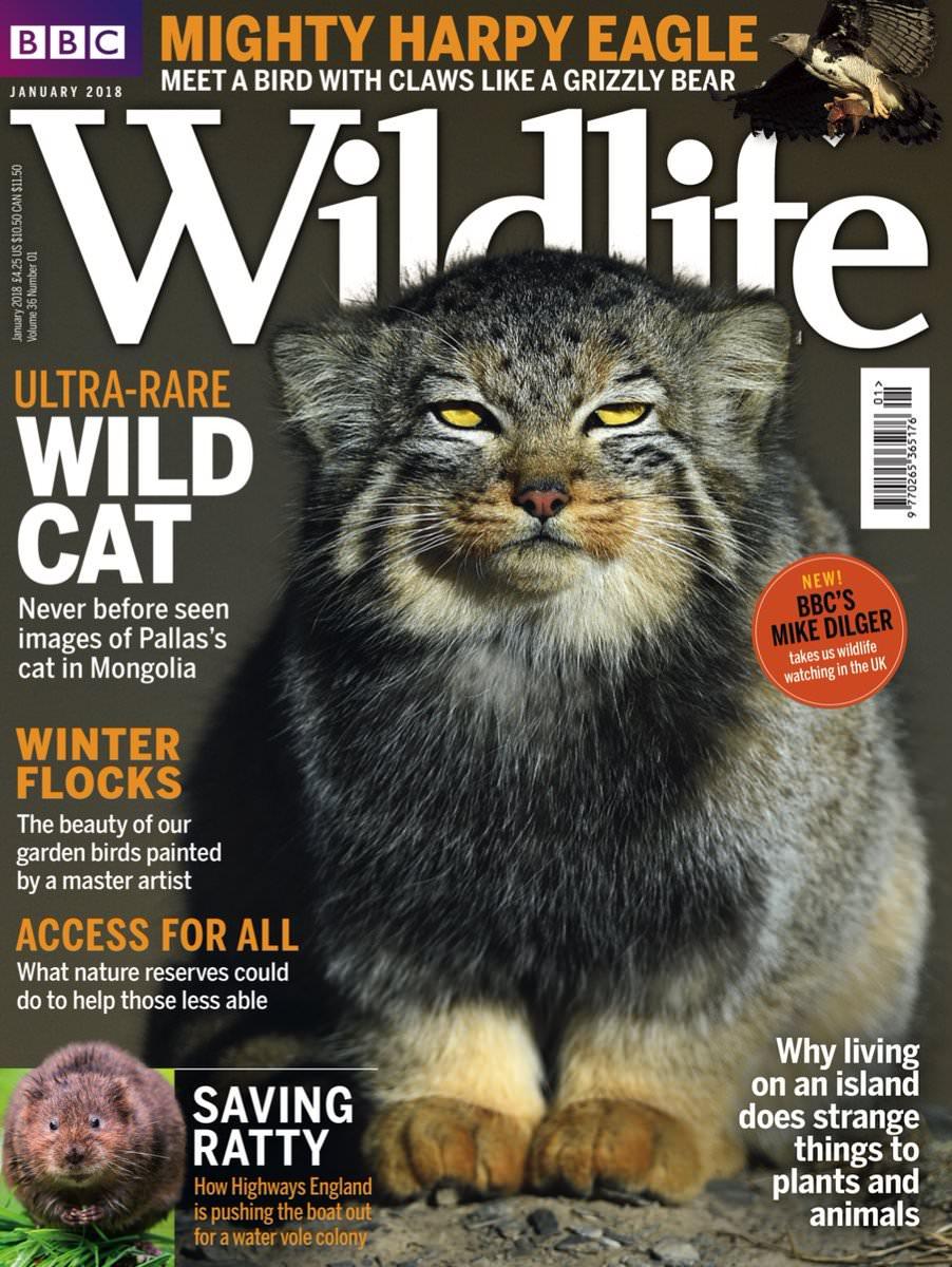 BBC Wildlife – January 2018