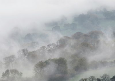 Mists envelop autumnal trees, Brecon Beacons National Park, Wales, UK, October